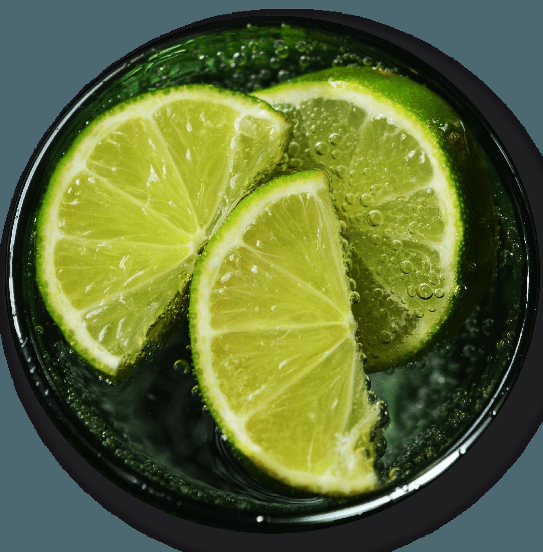 concentrado de jugo de limón