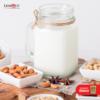 ¿Cuál es la mejor leche vegana?
